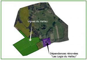 histoire du hallay - XXIeme plan
