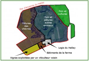 histoire du hallay - de nos jours plan