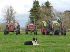 tracteur du hallay