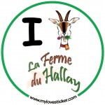 financement participatif à Nantes - I love hallay